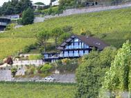 DAVINCI HAUS - Haus am Genfer See